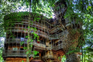 "Top 10 Amazing Treehouses With Feng ""Swayyy"""